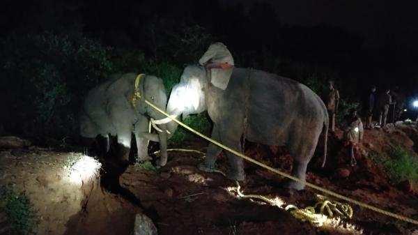 3 நாள் போராட்டத்திற்கு பின் பிடிபட்ட அரிசி ராஜா!