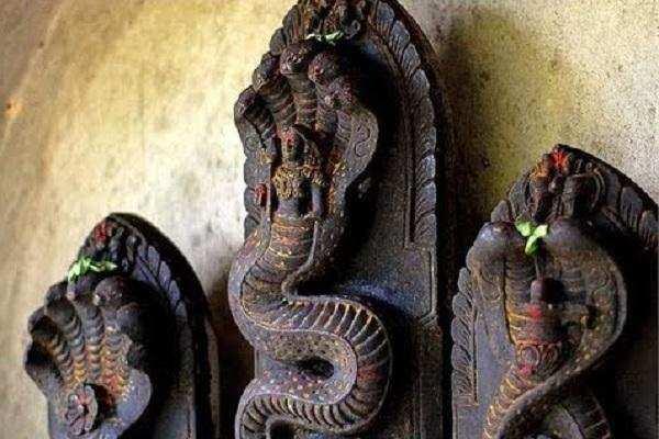 தோஷங்கள் நீக்குமா நாகவழிபாடு?