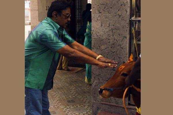 மாட்டு பொங்கலை கொண்டாடிய விஜயகாந்த்