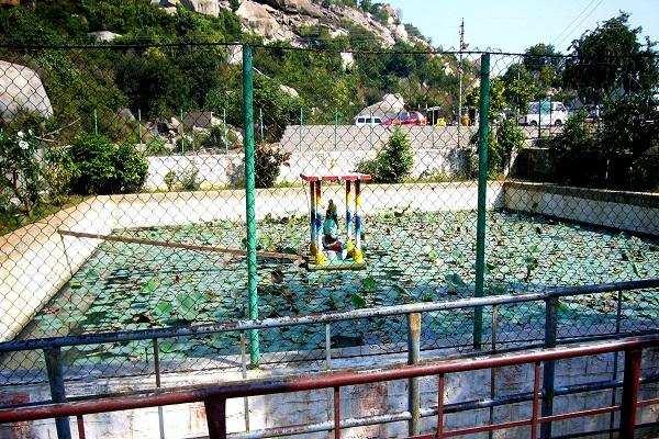 சஞ்சீவியாக நோய் தீர்க்கும் அர்த்தகிரி ஆஞ்சநேயர் திருக்கோயில்