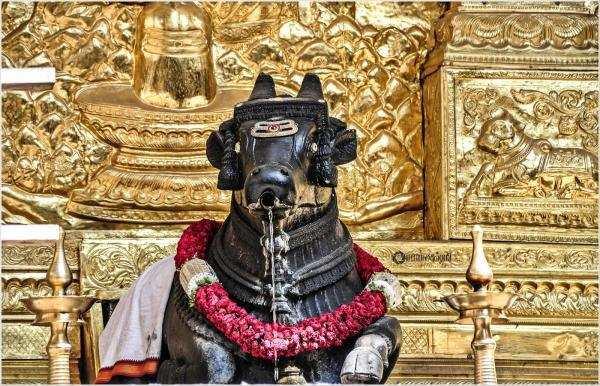 7000 வருடங்களாக நந்தியின் வாயில் வழியும் நீரால் குளிரும் சிவன்
