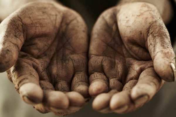 என்ன விதைக்கிறோமோ அதையே பெறுகிறோம்…