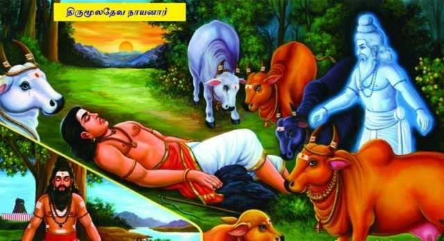 திருமூல நாயனார் -1