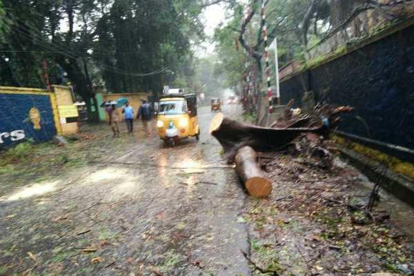 ராஜஸ்தான், குஜராத் உள்ளிட்ட வட மாநிலங்களில் மழைக்கு 25 பேர் பலி!